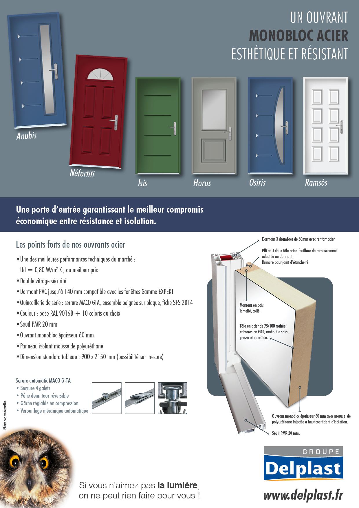 nouveau produit 2015 porte d entr e ouvrant monobloc acier delplast. Black Bedroom Furniture Sets. Home Design Ideas